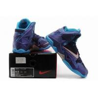 China NIKE LEBRON XI XDR 11 Hornets shoes cheap wholesale wholesale