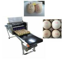 Quality High Tech Carton Coding Machine Eggs Number Inkjet Printer With Solvent For Egg for sale