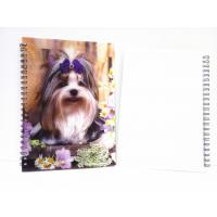 China A4,A5,A6 size 3D Lenticular notebook cover for spiral notebook wholesale