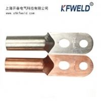 Buy cheap DT 2 holes Copper Terminal Cable Lug, Manufacture Copper Cable Lug Tinned Copper from wholesalers