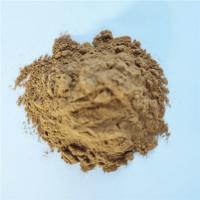 China health care product extract brazil mushroom for capsule on sale