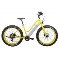 China Lady Style Fastest MTB Electric Bicycle , Folding Electric Bicycle 2 Wheel wholesale