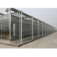 China Agriculture Stainlable Green Prefab Houses  Clear With Large Day Lighting Areas wholesale