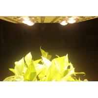 China 415W LED Grow Lights Full Spectrum Growing From Vegetate To Bloom , Grow Rooms / Tents wholesale