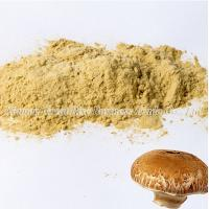 China Mushroom Extract Powder wholesale