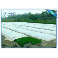 China Anti-UV PP Spunbonded Agriculture Non Woven Landscape Fabric Eco-Friendly wholesale