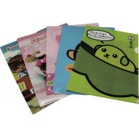 China File Folder 3D Lenticular Images Plastic Cover Notebooks For Office / School wholesale