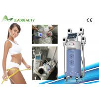 China Professional Body Shape Fast Slim Weight Loss Cryolipo Cryolipolysis Cool Sculpting on sale