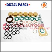 China Diesel Fuel Pump Repair Kit  2 447 010 011 For Ve Pump Rebuild wholesale