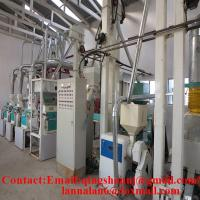 China corn flour equipment corn flour mill flour mill machine on sale
