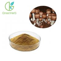 China Reduce Blood Cholesterol Levels Agaricus Blazei Murill Extract Anti - Oxidant wholesale