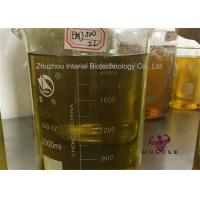China Newest Injectable Anabolic Steroid Gear FMJ 300 Mg/ml For Bodybuilding Premade Oil FMJ 300 wholesale
