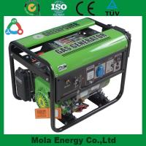 China Small size Household biogas generator wholesale