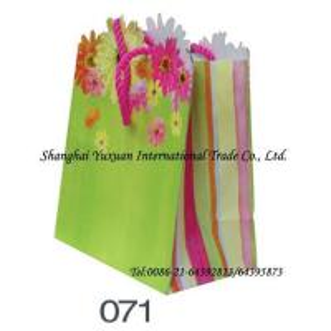 China Paper bag, paper packaging bag, packaging bag, packing bag, gift bag, shopping bag, paper gift bag on sale