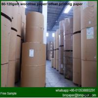 China Bright Color Woodfree Offset Paper A4 Size wholesale