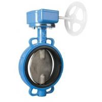 Quality Extension Stem Butterfly Valve for sale
