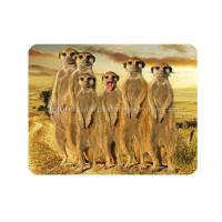 China Custom Animal 3D Fridge Magnets PET Lenticular Thickness 0.6mm wholesale