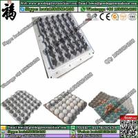 China paper seedling tray pulp moulding mold wholesale
