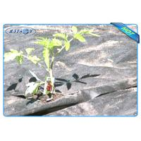 Quality Black Air Permearble PP Nonwoven Fabric Agriculture Cover / Ground Protection for sale