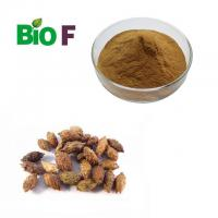China Health Care Powdered Herbal Extract Fructus Xanthii Extract Powder With Solvent Extraction wholesale
