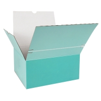 China Litho Printing Recyclable Corrugated Cardboard Boxes Spot UV on sale