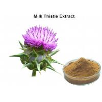China Milk Thistle Natural Plant Extracts Silymarin Scavenging Active Oxygen For Liver Protecting wholesale