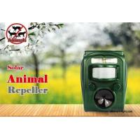 China Graden Ultrasonic Solar Animal Repeller ASF-006 Dog Cat Deer Repeller by Ultrasonic Signal and Flashing Frighten Animal wholesale