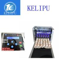 China Electronic Intelligent 12 V Egg Printer Machine With One Year Warranty Time wholesale