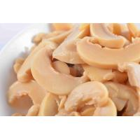 China Professional Safe Canned Champignon Mushroom With Steamed Processing Type on sale