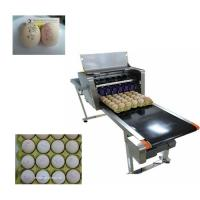 China Multiple Nozzle High Resolution PrinterFor Food Industry Egg Date Stamp Machine wholesale