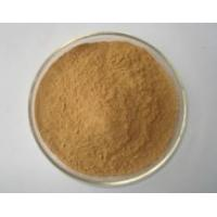 China Galla Chinensis P.E./ Chinese Gall Extract/Chinese Gall Extract Powder Ellagic Acid on sale