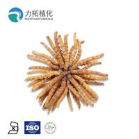 China 30% - 50% Mushroom Polysaccharides Cordyceps Sinensis Extract With Brown Powder wholesale