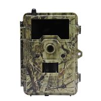 China 2.4 inch color display Outside Wild Game Infrared Trail Hunting Camera , CE / ROHS / FCC Approvals wholesale