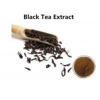China Black Tea Extract Powder Brown Fine Powder Polyphenols Ant I- Inflammatory wholesale