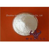 Buy cheap Anti Estrogen Steroids White Powder 7 Keto Dhea Acetate For Anti-aging 853-23-6 from wholesalers