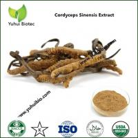 China Ophiocordyceps sinensis,Health supporting mushrooms Cordyceps sinensis extract on sale
