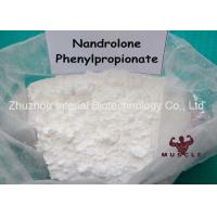 China Safe Gain Muscle Fat Loss Steroids , Npp Steroid Deca Durabolin Oral CAS 62-90-8 wholesale
