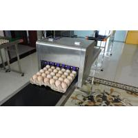 China High Speed Dates Or Logo Egg Printing Machine With Computer Control wholesale
