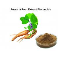 China Pueraria Natural Plant Extracts 40% Flavonoids for Hangover breast enhancement / postponed female menopause wholesale