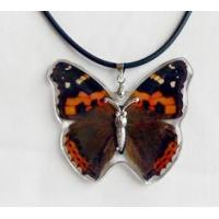 China Fashion Pendant--Real Butterfly Jewelry on sale
