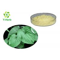 China 70% Kava Root Powder Kava Extract Kavalactones Sleeping Improvement Ingredients wholesale