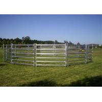 Buy cheap 1.8 x 2.1M Heavy Duty Cattle Corral Panels For Sale Cattle Yard Panel & Gate from wholesalers