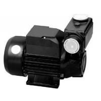 China TPS  Series Domestic Water Pumps Precision Casting Motor Housing 1HP / 0.75KW wholesale