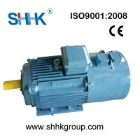 Yvp invertible ac induction motor three phase for 3 phase ac induction motor for sale