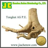 China top quality Tongkat ali Root Extract 100:1,200:1 ,brown powder on sale