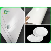 China FDA & SGS 300g Approved PE Coated Paper White FBB Board For Paper Plates wholesale