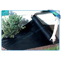 Quality Black Garden Weed Control Fabric For MaintainTemperature To Benefit Healthy Growth for sale