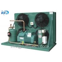 China R404a Air Cooled Condensing Unit For Cold Storage With Bitzer Compressor 4EES-6Y 4TES-12Y 6HE35Y wholesale