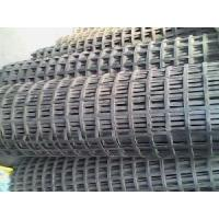 China Steel-Plastic Compound Geogrid wholesale