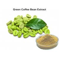 China Natural Plant Extract Powder 45% Chlorogenic Acid 100 Pure Green Coffee Bean Extract Caffeine Capsules wholesale
